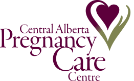 Pregnancy Care Logo